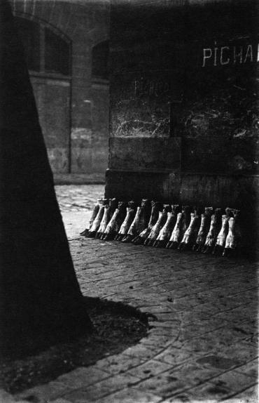 Eli Lotar, Abattoir, 1929.jpg